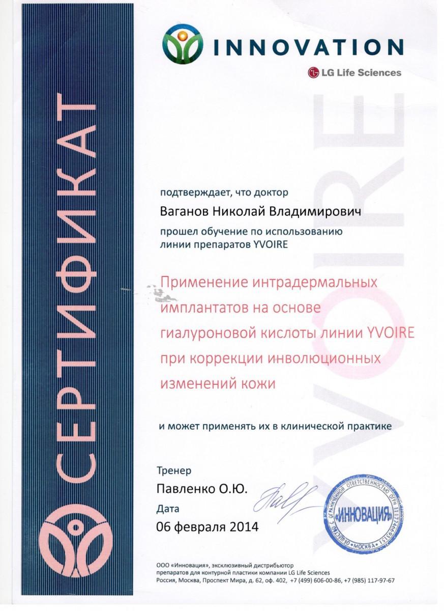сертификат Ваганов Николай Владимирович от компании Innovation